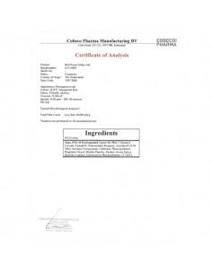 Gel Retardante Bull Power - 30ml - PR2010300268