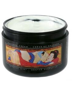 Creme De Massagem Shunga Menta - PR2010300379